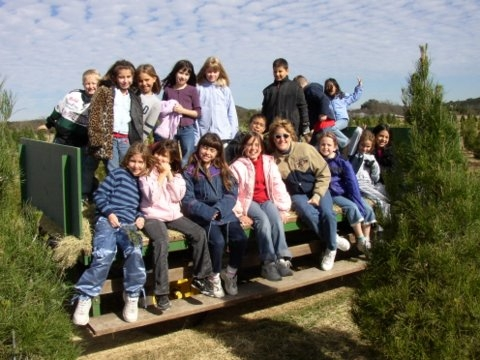Student Tours | Pipe Creek Christmas Trees